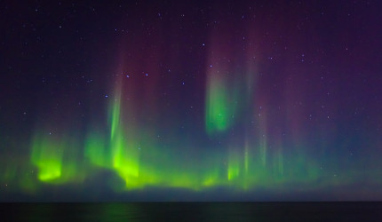 Northern Light Tour with Hurtigruten - Aurora Borealis